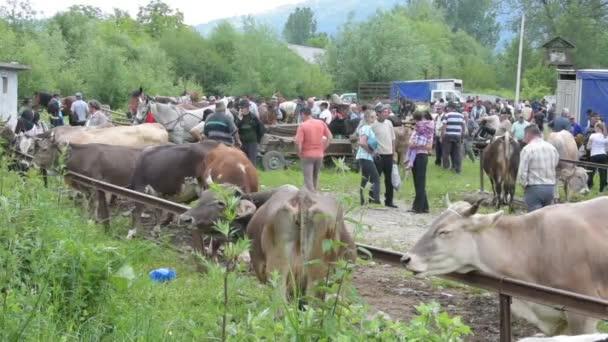 lidé navštěvují zvířat venkovní trh v Rumunsku