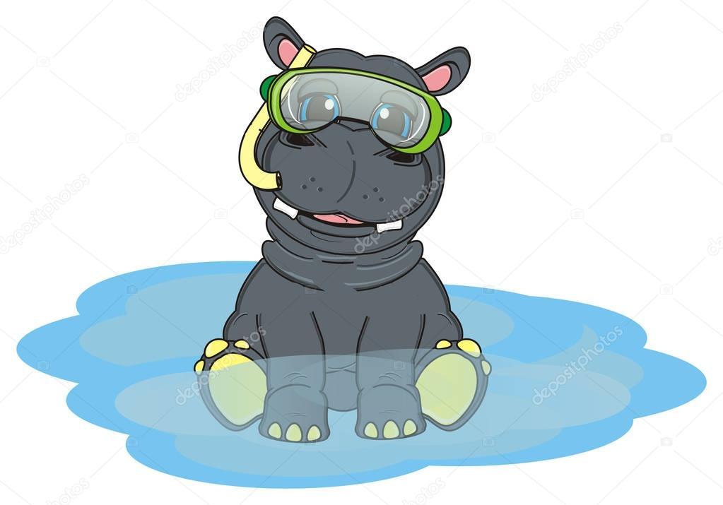 Hippopotame Gris Mignon Photographie Tatty77tatty 128969142