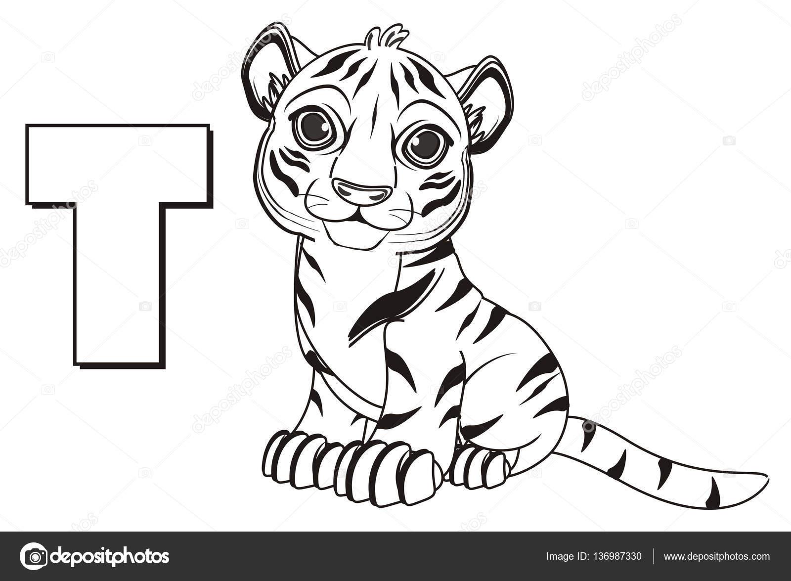 Imágenes De Tigres Para Colorear Tigre Naranja Lindo