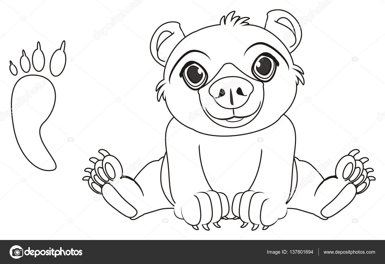 lindo oso para colorear — Fotos de Stock © tatty77tatty #137801694
