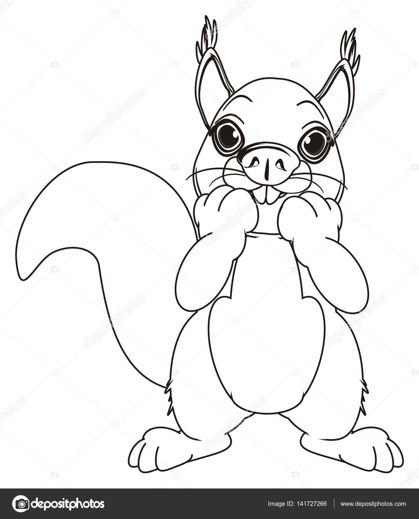 Malvorlagen Eichhörnchen stand — Stockfoto © tatty77tatty #141727266