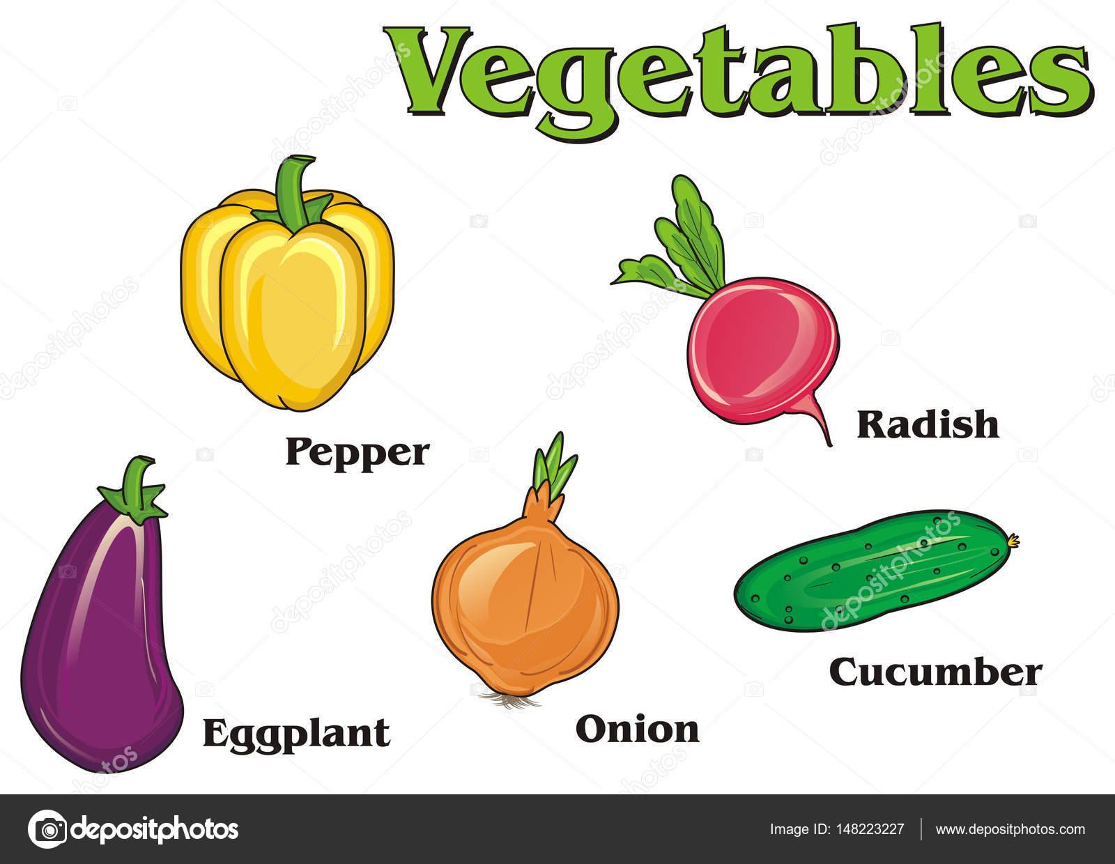 Name Verdura: Verduras Y Sus Nombres — Foto