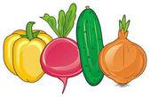 čtyři barevná zelenina