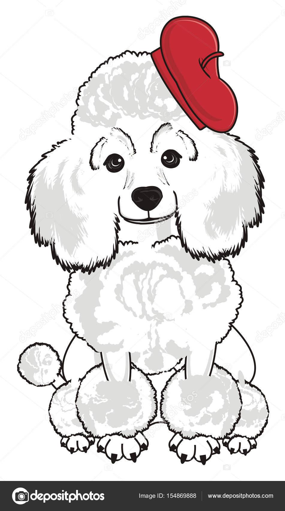 Perro caniche lindo — Foto de stock © tatty77tatty #154869888