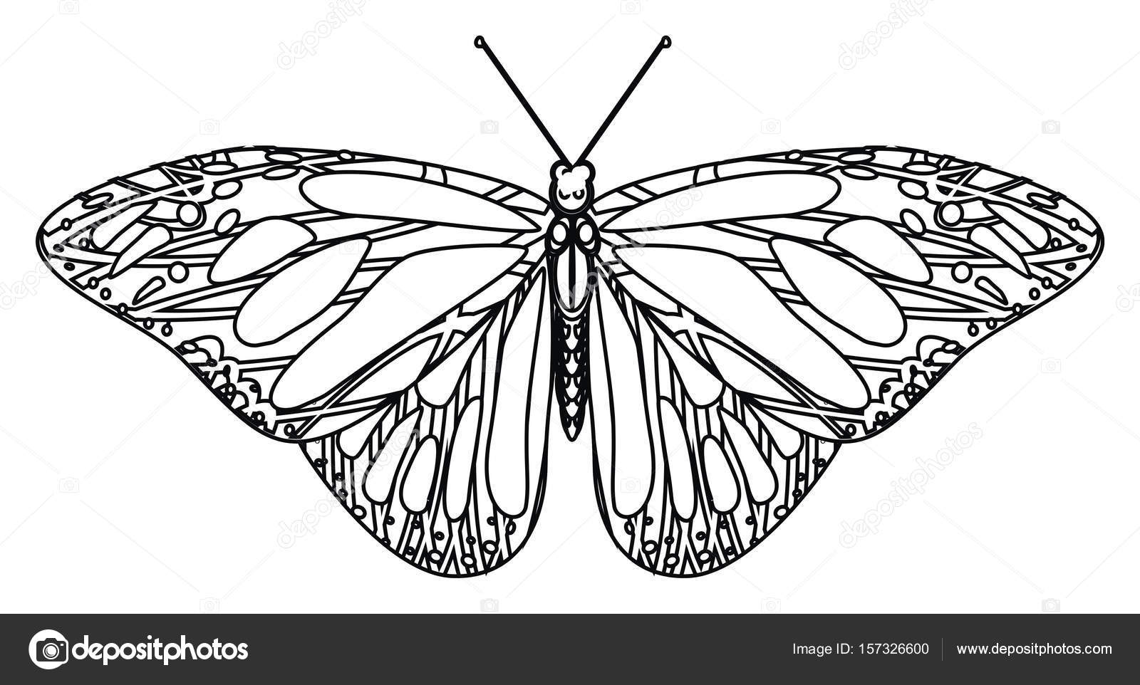 Coloring One Butterfly Stock Photo C Tatty77tatty 157326600