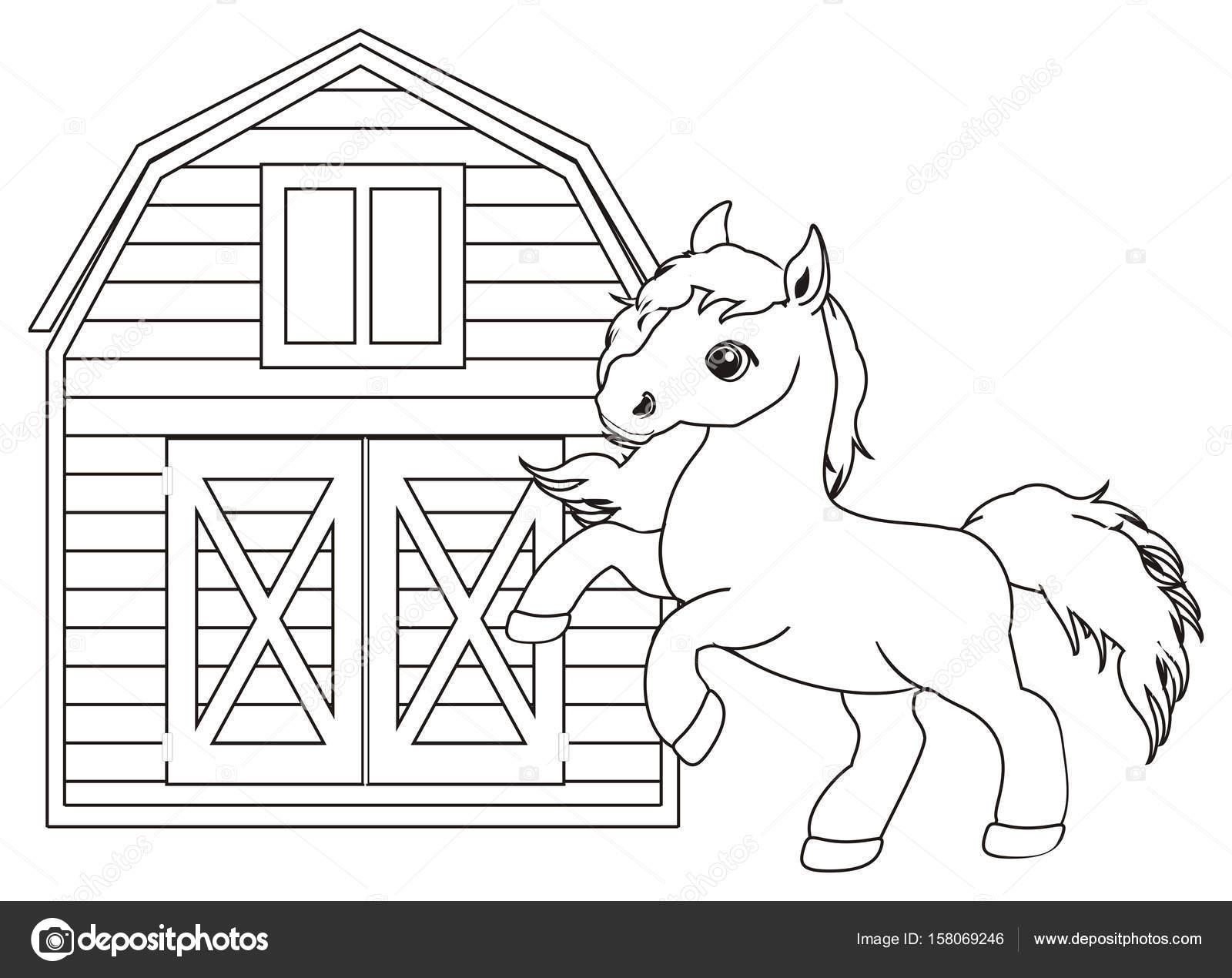 Fotografie muso di cavallo da colorare disegni da for Immagini di cavalli da disegnare