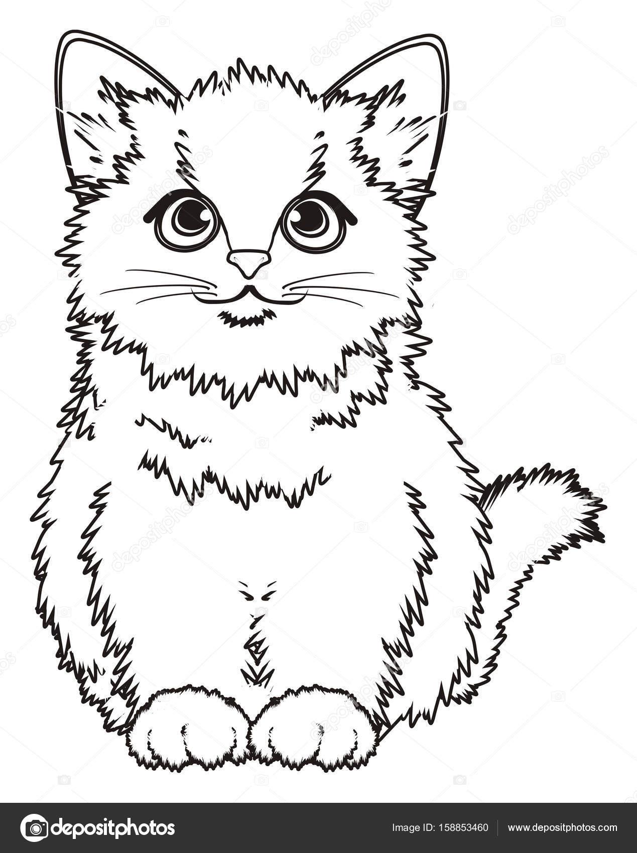 colorear gatito — Foto de stock © tatty77tatty #158853460