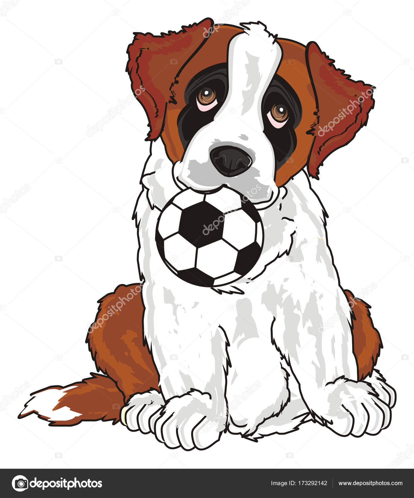 cachorro de San Bernardo — Foto de stock © tatty77tatty #173292142
