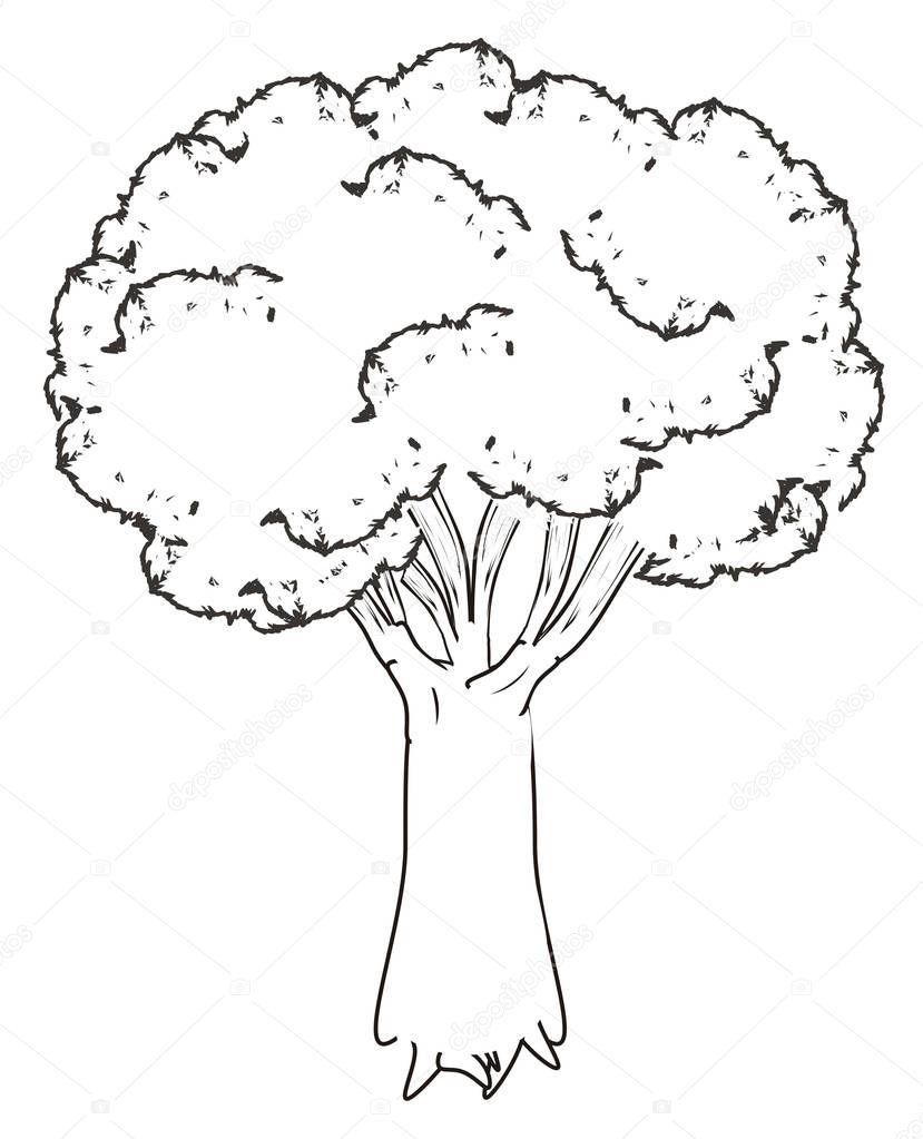 ingekleurde boom kleurplaat kidkleurplaat nl