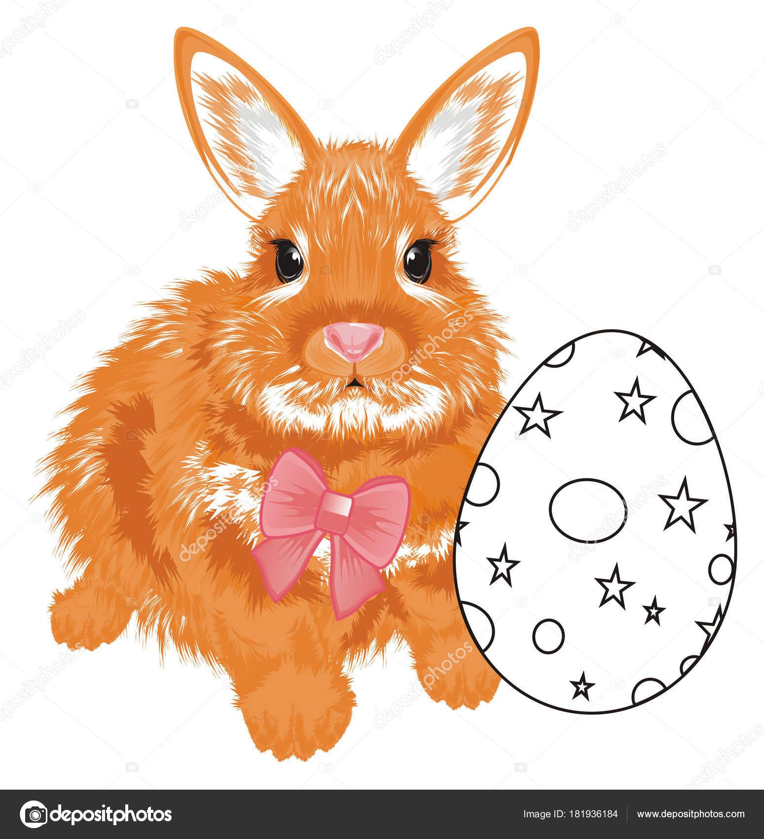 Küçük Portakal Tavşan Yumurta Otur Izle Boyama Bir Yayla Stok Foto