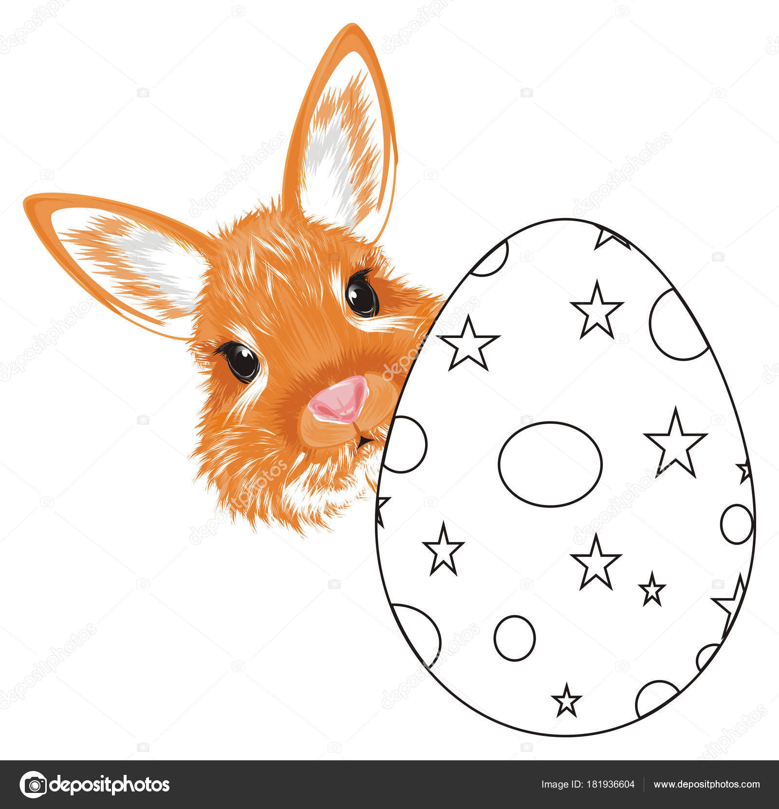 Kleurplaten Dieren Uit Een Ei.Snuit Van Oranje Bunny Stok Uit Uit Het Kleurplaten Stockfoto