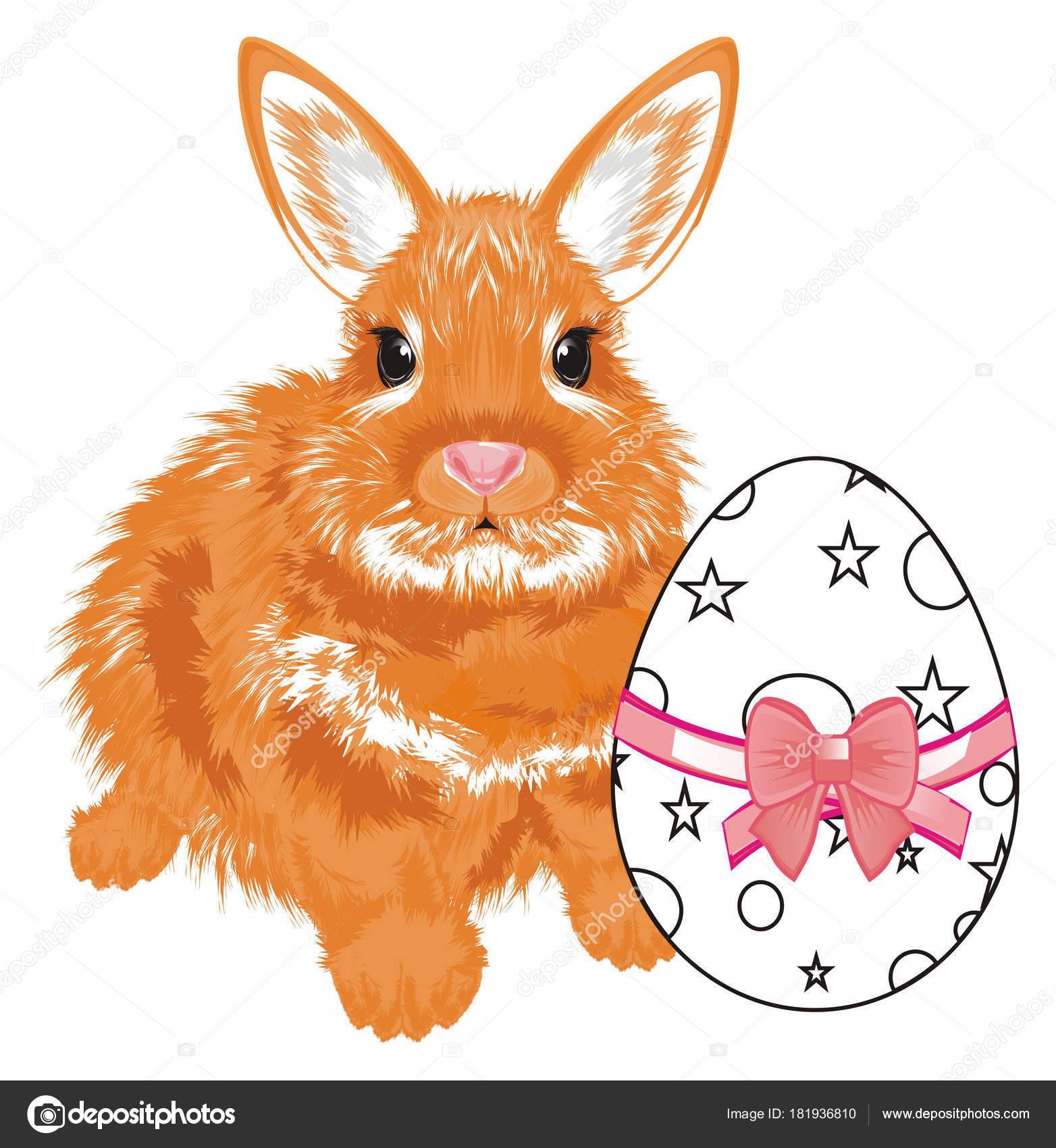 Kleine Orange Hase Mit Mit Einem Bogen Färbung — Stockfoto ...