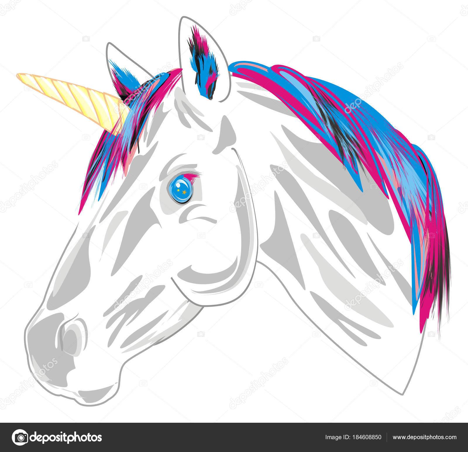 Fotografie Unicorni Su Bianco Unicorno Sfondo Bianco Foto Stock