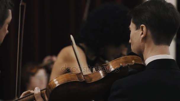 Petrohrad, Rusko - 23. června 2016: Zblízka muž a žena hudebníci ladění houslí, příprava na koncert