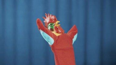 Kohouta maňáska šíří křídla zbraní, zpívá a dabing modré pozadí