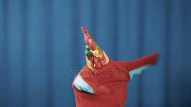 Kohouta maňáska tance, tleskání rukou a uklonil se modré závěsy pozadím