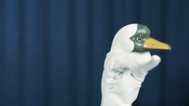 Kachní maňáska vydělávání peněz hodil gesto na scéně s modrým pozadím