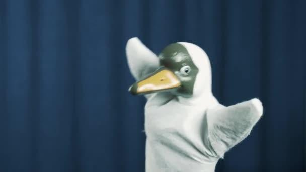 Objeví se na scéně s modrým pozadím, s pozdravem publikum kachna maňáska