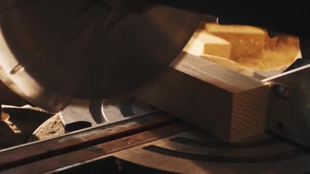 Circular saw cutting plank of wood in carpenter workshop