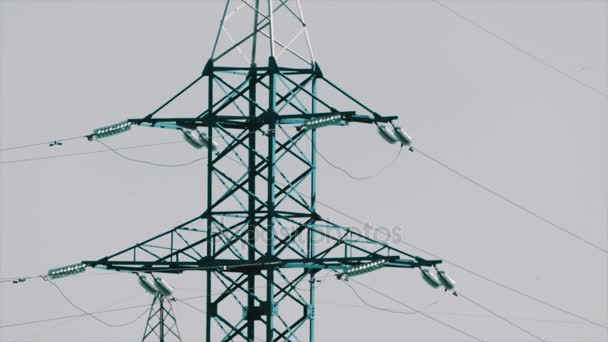 Seaguls flying around power line tower in front of sky