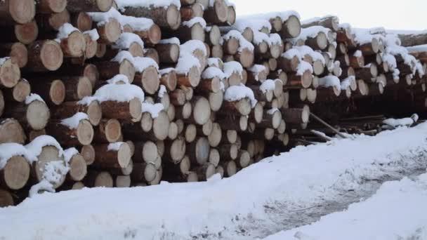 Panoramatický výhled na hromadu dřeva pod sněhem na zimní den