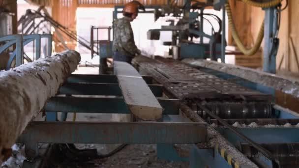 Carpenter working on workbench at sawmill, cutting timber