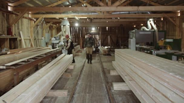 Truhláře carry dřevo prkna klade na hromadách na pile