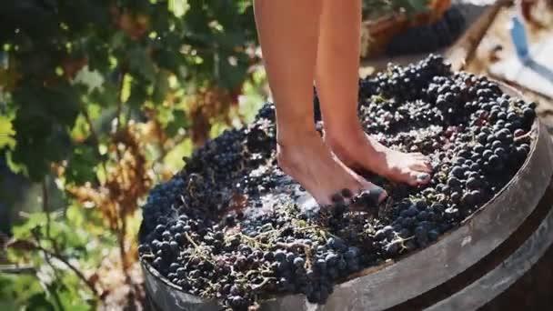 Ženy nohy dupat černé hrozny v dřevěné tyče