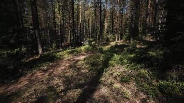 Jízdního kola freeride závod v lese, sportovec rychlé jízdy směrem k parki