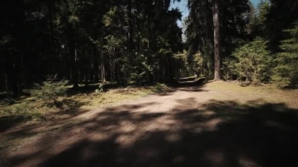 Jízdního kola freeride závod v lese, sportovci rychle jezdí podél borovice