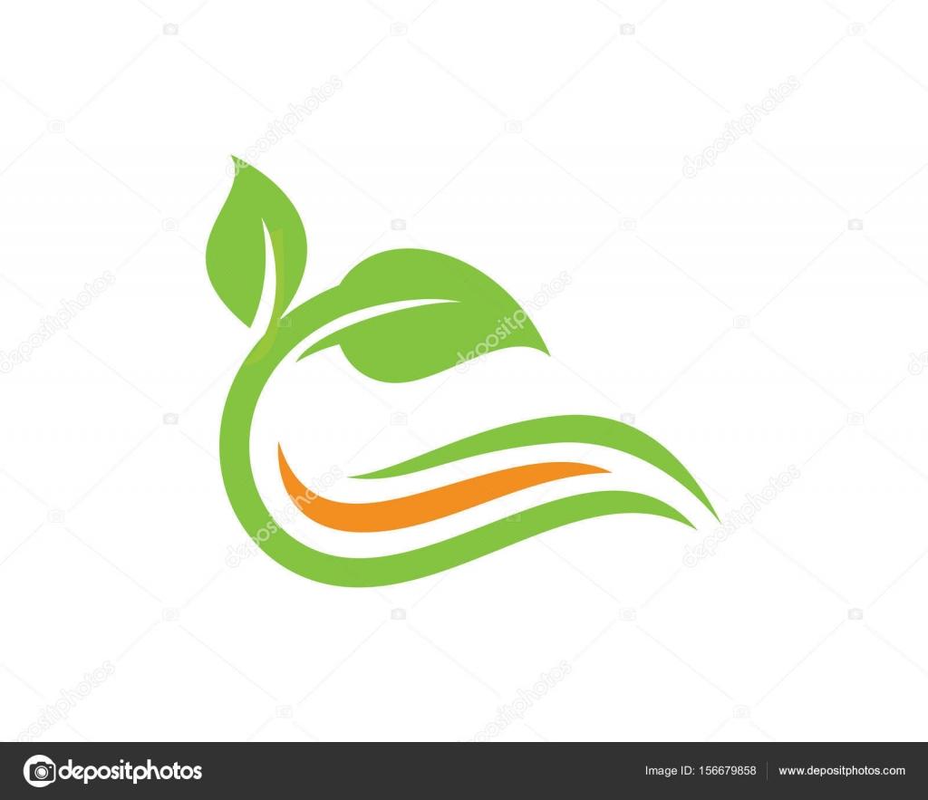 Naturaleza Hoja Logo plantilla diseño Vector, emblema, concepto ...