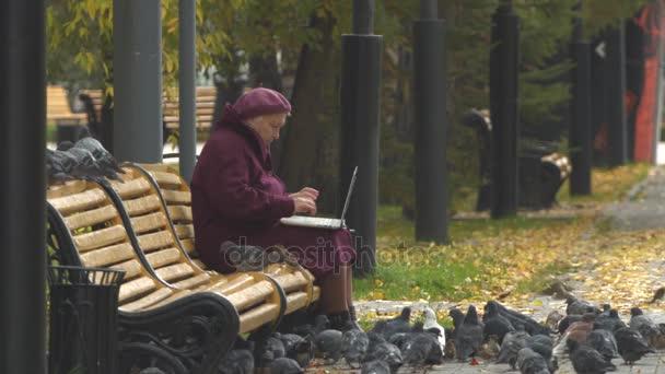 Großmutter mit Laptop und Vögeln. Zeitlupe.