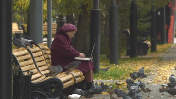 Grandmother with laptop and birds. Slow motion.