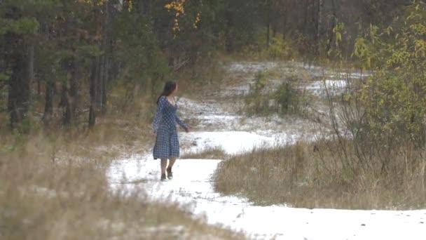 Spaziergang im Herbstwald unter dem ersten Schnee.