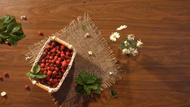Jahody a kytice chamomiles na stole. Pohled shora.