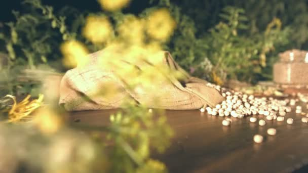 Still life with chickpeas.Slow motion. The glide of the camera ( from left to right ) along the table with a chickpeas.The hand of the man puts on the saucer not peeled chickpeas.A bush chickpeas are grow in the background.