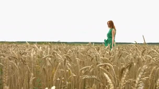 Spaziergang auf dem Weizenfeld. Zeitlupe. ein schönes rothaariges Mädchen in einem grünen Kleid geht am Feld des reifen Weizens entlang. Sie bleibt stehen und lächelt. die Kamera bewegt sich von rechts nach links.