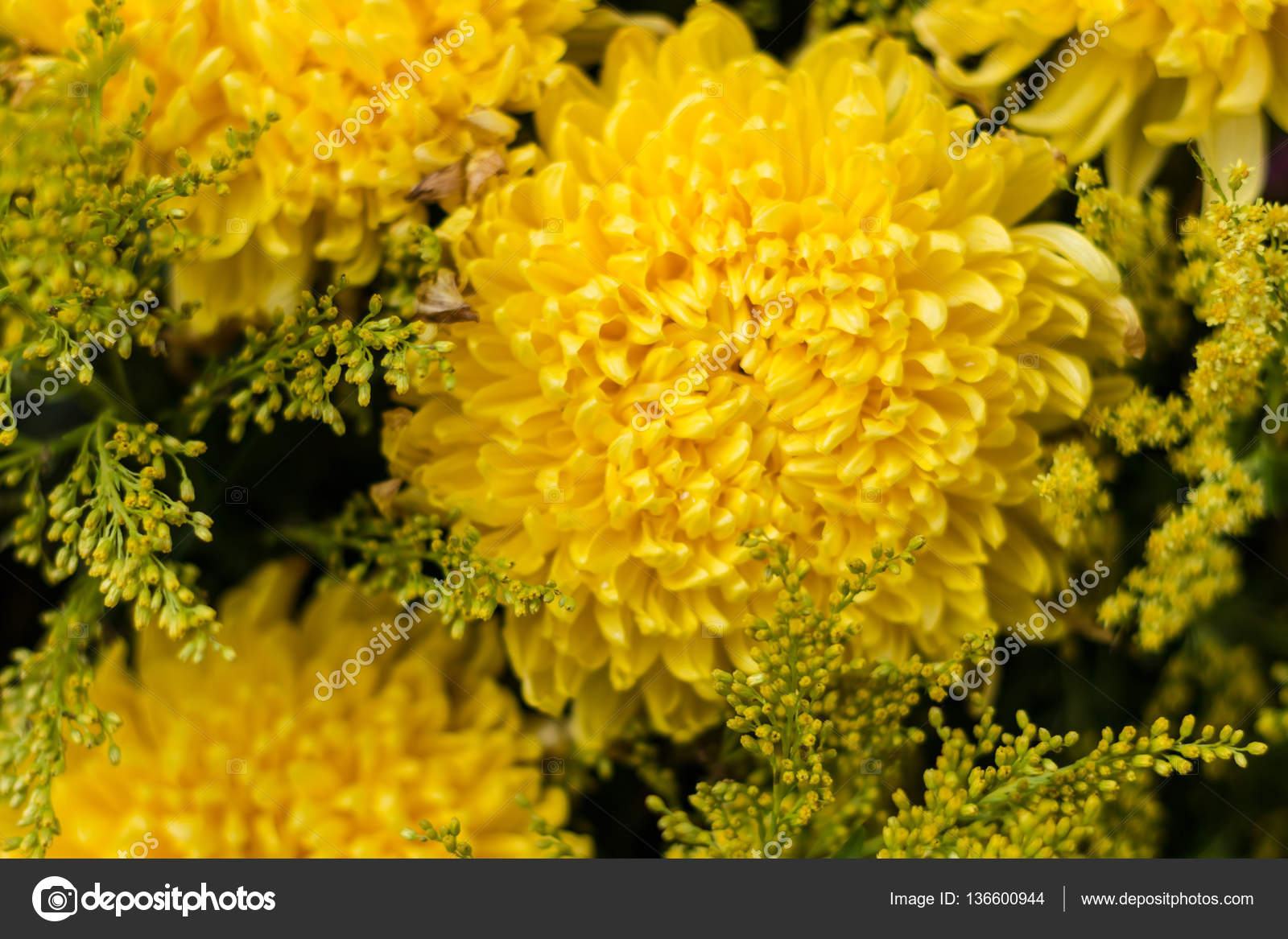 Flowers Abstract Soft Floral Natural Background From Yellow
