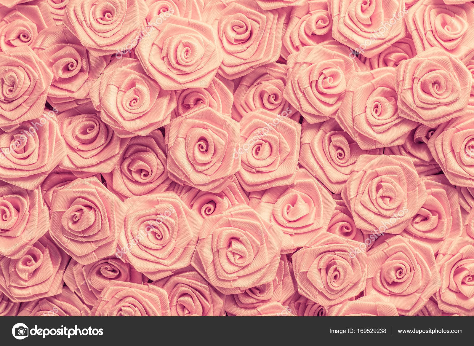 Wedding Roses Background Light Pink Roses Decoration Of The