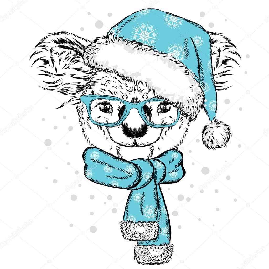 Lindo koala con gafas, sombrero y bufanda. Ilustración de vector ...