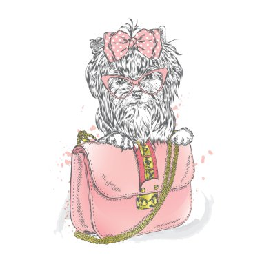 A beautiful dog and beautiful handbag. Clutch. Yorkshire Terrier. Vector illustration for greeting card, poster, or print on clothes. Fashion & Style. Vintage.