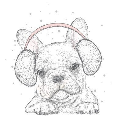 French Bulldog in winter headphones. Vector illustration for a card or poster. Print on clothes. Cute puppy. Pedigree dog. Winter holidays. New Year's and Christmas.