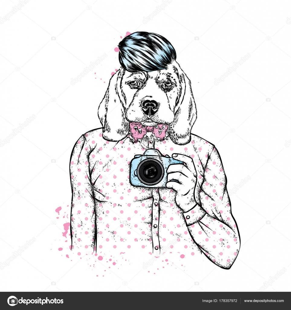 犬の頭を持つ男 犬がスタイリッシュな シャツ おしゃれなヘアスタイルと