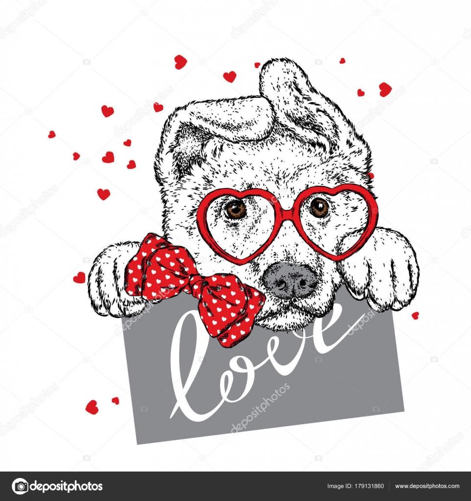 Netter Hund Mit Herz Brille Und Krawatte Vektor Illustration Für ...