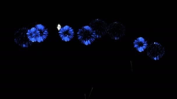 Barevné ohňostroje v noci. Nádherný firecrakers 3d vykreslení. Modrá verze 28