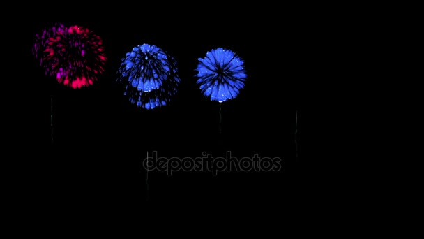Colorful fireworks at night. Spectacular firecrakers 3d render. Blue version 36