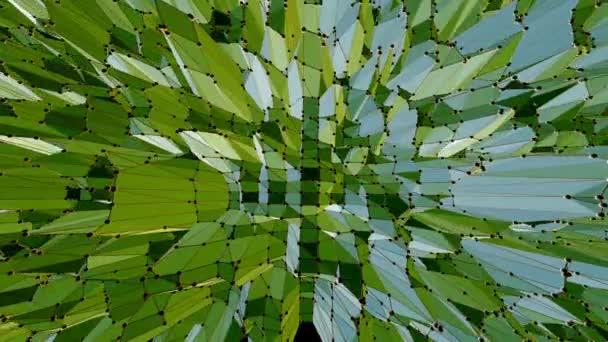 Zelené nízké poly pozadí mávat. Abstraktní nízké poly povrch jako technologické zázemí stylové nízké poly design. Polygonální mozaiku pozadí s vertex, hroty. Karikatura moderní 3d design 1