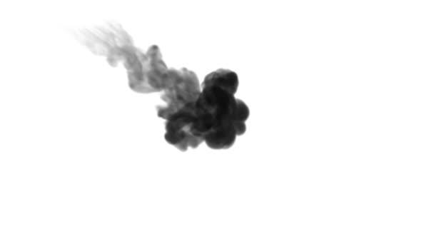 Egy tinta áramlását, infúziós fekete festék felhő füst- vagy, tinta beadni a fehér, a lassú mozgás. Fekete festék felhő vízben. Koromsötét háttér vagy füst hátteret, festékhatásokat használja luma Matt mint alfa-maszkot
