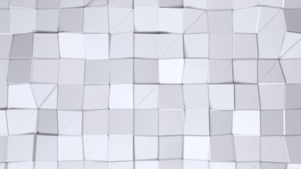 Jednoduché nízké poly 3d povrch jako živé prostředí. Měkký geometrické nízké poly pozadí čistě bílé šedé polygonů. 4 k rozlišení Full hd bezešvé smyčka pozadí