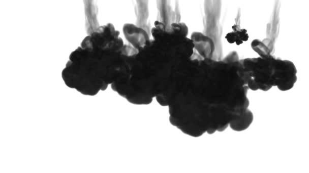 fekete felhők vagy füst, tinta beadni az elszigetelt fehér lassítva. Fekete gouache feloldódik a vízben. Koromsötét háttér vagy füst hátteret, festékhatásokat használja luma Matt mint alfa-maszkot
